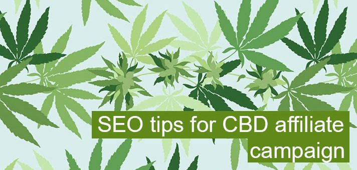 SEO tips for CBD affiliate campaign